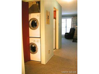 Photo 6: 210 1619 Morrison St in VICTORIA: Vi Jubilee Condo for sale (Victoria)  : MLS®# 665023