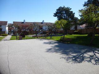 """Photo 16: 535 9651 GLENDOWER Drive in Richmond: Saunders Townhouse for sale in """"GLENACRES VILLAGE"""" : MLS®# V1058496"""