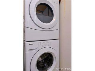 Photo 15: 304 1325 Harrison St in VICTORIA: Vi Downtown Condo Apartment for sale (Victoria)  : MLS®# 733873