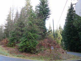 "Main Photo: 33553 JOHNSON Street in Mission: Steelhead Home for sale in ""Steelhead"" : MLS®# R2122730"