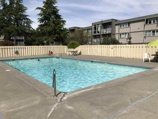 "Photo 13: 212 3451 SPRINGFIELD Drive in Richmond: Steveston North Condo for sale in ""Admiral Court"" : MLS®# R2201233"