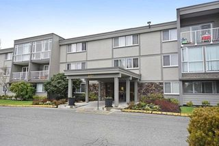 "Photo 1: 212 3451 SPRINGFIELD Drive in Richmond: Steveston North Condo for sale in ""Admiral Court"" : MLS®# R2201233"