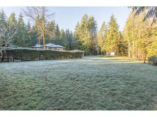 Photo 18: 29575 TAISE Place in Mission: Stave Falls House for sale : MLS®# R2226620