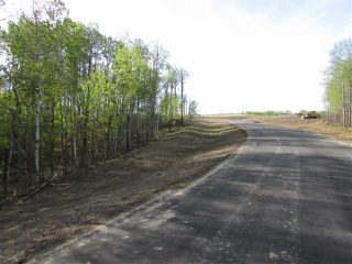 Photo 12: 11 53214 RGE RD 13 Road: Rural Parkland County Rural Land/Vacant Lot for sale : MLS®# E4099591