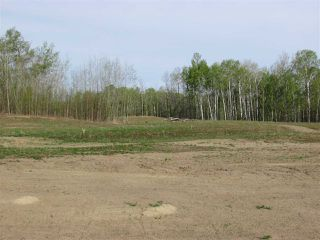 Photo 1: 11 53214 RGE RD 13 Road: Rural Parkland County Rural Land/Vacant Lot for sale : MLS®# E4099591