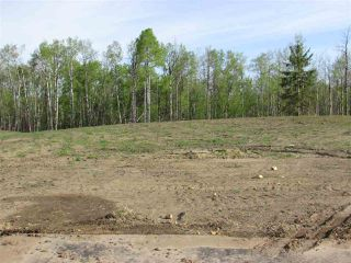 Photo 9: 11 53214 RGE RD 13 Road: Rural Parkland County Rural Land/Vacant Lot for sale : MLS®# E4099591