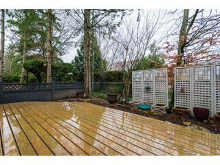 "Photo 19: 4 18883 65 Avenue in Surrey: Cloverdale BC Townhouse for sale in ""APPLEWOOD"" (Cloverdale)  : MLS®# R2246448"