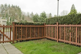 """Photo 13: 109 285 ROSS Drive in New Westminster: Fraserview NW Condo for sale in """"THE GROVE AT VICTORIA HILL"""" : MLS®# R2249644"""