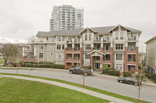 """Photo 1: 109 285 ROSS Drive in New Westminster: Fraserview NW Condo for sale in """"THE GROVE AT VICTORIA HILL"""" : MLS®# R2249644"""