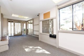 Photo 13: 103 338 WARD Street in New Westminster: Sapperton Condo for sale : MLS®# R2262121