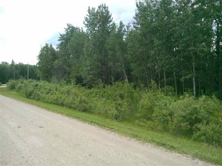 Photo 15: 32 53301 RGE RD 32 Road: Rural Parkland County Rural Land/Vacant Lot for sale : MLS®# E4134995