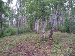 Photo 11: 32 53301 RGE RD 32 Road: Rural Parkland County Rural Land/Vacant Lot for sale : MLS®# E4134995