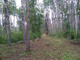 Photo 12: 32 53301 RGE RD 32 Road: Rural Parkland County Rural Land/Vacant Lot for sale : MLS®# E4134995