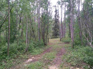 Photo 2: 32 53301 RGE RD 32 Road: Rural Parkland County Rural Land/Vacant Lot for sale : MLS®# E4134995