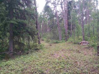 Photo 3: 32 53301 RGE RD 32 Road: Rural Parkland County Rural Land/Vacant Lot for sale : MLS®# E4134995