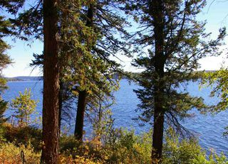 Main Photo: LOT B GUEST Road: Cluculz Lake Home for sale (PG Rural West (Zone 77))  : MLS®# R2332939