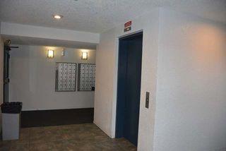 Photo 14: 311 2624 MILL WOODS Road E in Edmonton: Zone 29 Condo for sale : MLS®# E4148816
