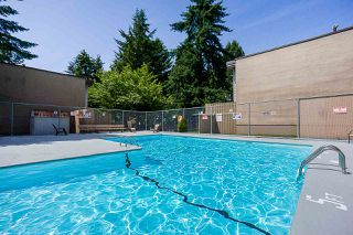 """Photo 18: 8 13755 102 Avenue in Surrey: Whalley Townhouse for sale in """"The Meadows"""" (North Surrey)  : MLS®# R2373325"""