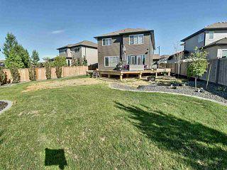 Photo 20: 3363 Hilton Crescent NW in Edmonton: Zone 58 House for sale : MLS®# E4160188