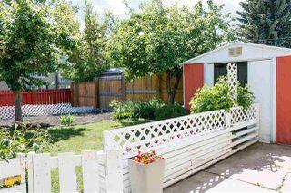 Photo 22: 16509 90 Avenue in Edmonton: Zone 22 House for sale : MLS®# E4161522