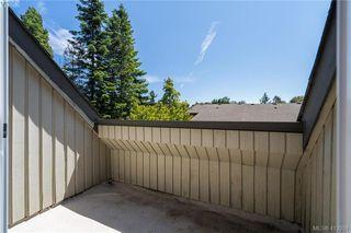 Photo 22: 4 3981 Saanich Road in VICTORIA: SE Quadra Row/Townhouse for sale (Saanich East)  : MLS®# 412931