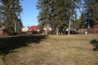 Photo 4: 510 1ST Avenue: Rural Wetaskiwin County Rural Land/Vacant Lot for sale : MLS®# E4165833
