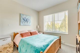 "Photo 14: 309 22290 NORTH Avenue in Maple Ridge: West Central Condo for sale in ""SOLO"" : MLS®# R2391138"