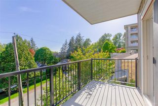 "Photo 13: 309 22290 NORTH Avenue in Maple Ridge: West Central Condo for sale in ""SOLO"" : MLS®# R2391138"