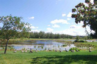 Photo 21: 3621 HUMMINGBIRD Way in Edmonton: Zone 59 House Half Duplex for sale : MLS®# E4183968