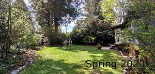Photo 5: 5623 OSPREY Street in Sechelt: Sechelt District House for sale (Sunshine Coast)  : MLS®# R2479745