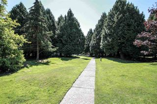 "Photo 27: 609 9300 PARKSVILLE Drive in Richmond: Boyd Park Condo for sale in ""MASTERS GREEN"" : MLS®# R2497625"