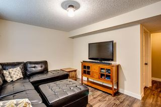 Photo 22: 216 Copperpond Road SE in Calgary: Copperfield Detached for sale : MLS®# A1034323