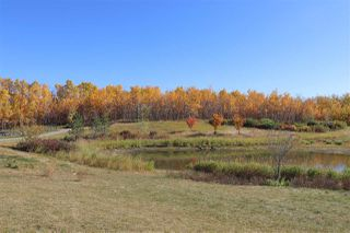 Photo 40: 3734 Hummingbird Way in Edmonton: Zone 59 House for sale : MLS®# E4216896