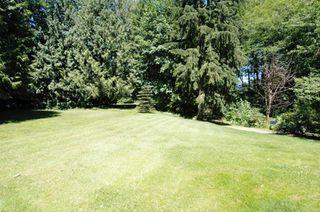 Photo 14: 25035 FERGUSON AV in Maple Ridge: Websters Corners House for sale : MLS®# V599642