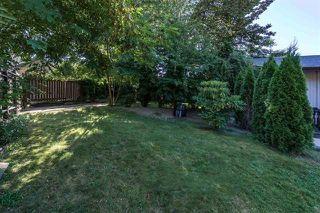Photo 18: 23406 TAMARACK Lane in Maple Ridge: Albion House for sale : MLS®# R2111235