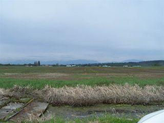 Photo 3: 10677 LADNER TRUNK Road in Delta: East Delta Land for sale (Ladner)  : MLS®# R2163564