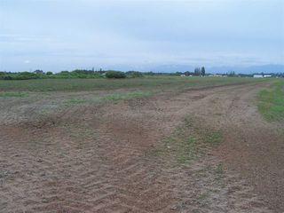 Photo 5: 10677 LADNER TRUNK Road in Delta: East Delta Land for sale (Ladner)  : MLS®# R2163564