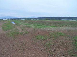 Photo 4: 10677 LADNER TRUNK Road in Delta: East Delta Land for sale (Ladner)  : MLS®# R2163564