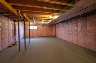 Photo 26: 1451 24 Street in Edmonton: Zone 30 House for sale : MLS®# E4098872