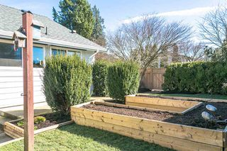 "Photo 17: 9299 213 Street in Langley: Walnut Grove House for sale in ""WALNUT GROVE"" : MLS®# R2248746"