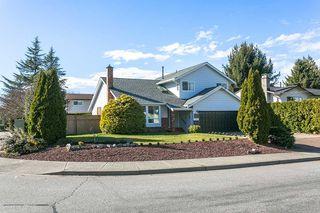 "Photo 20: 9299 213 Street in Langley: Walnut Grove House for sale in ""WALNUT GROVE"" : MLS®# R2248746"