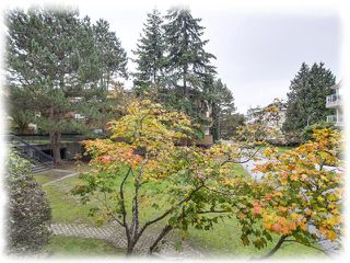 """Photo 8: 153 7293 MOFFATT Road in Richmond: Brighouse South Condo for sale in """"DORCHESTER CIRCLE"""" : MLS®# R2312691"""