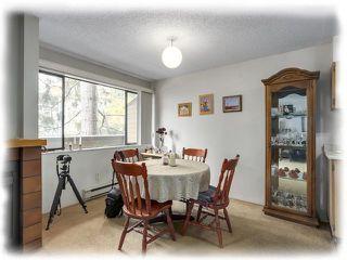 """Photo 4: 153 7293 MOFFATT Road in Richmond: Brighouse South Condo for sale in """"DORCHESTER CIRCLE"""" : MLS®# R2312691"""