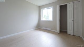 Photo 13: 4310 Dieppe Rd in VICTORIA: SE High Quadra Single Family Detached for sale (Saanich East)  : MLS®# 804957