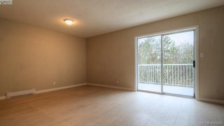 Photo 8: 4310 Dieppe Rd in VICTORIA: SE High Quadra Single Family Detached for sale (Saanich East)  : MLS®# 804957
