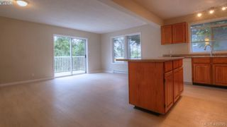 Photo 12: 4310 Dieppe Rd in VICTORIA: SE High Quadra Single Family Detached for sale (Saanich East)  : MLS®# 804957