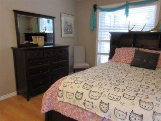 Photo 13: 213 30 ALPINE Place: St. Albert Condo for sale : MLS®# E4144137