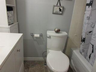 Photo 17: 213 30 ALPINE Place: St. Albert Condo for sale : MLS®# E4144137