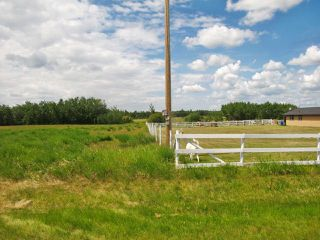 Photo 5: 23229 SH 651: Rural Sturgeon County Rural Land/Vacant Lot for sale : MLS®# E4150580