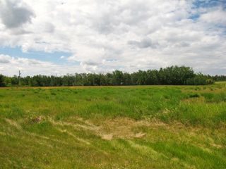 Photo 3: 23229 SH 651: Rural Sturgeon County Rural Land/Vacant Lot for sale : MLS®# E4150580